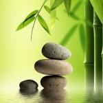 Bamboo Alignment